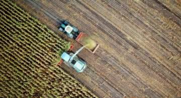 David Dzisiak Future of Agrifood