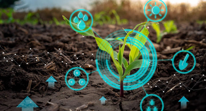 Regina's Agri-Food Innovation Ecosystem