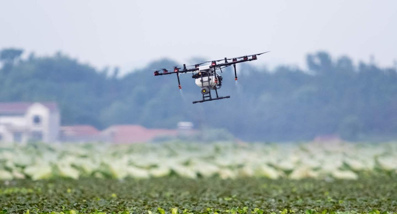 agriculture drone sprayed fertilizer